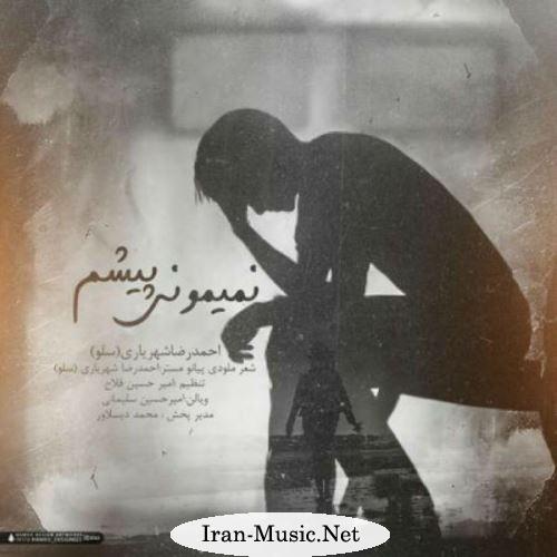 دانلود آهنگ جدید احمدرضا شهریاری بنام چرا برگشتی