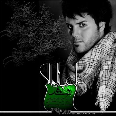 دانلود آهنگ جدید علی عبدالمالکی بنام نشد