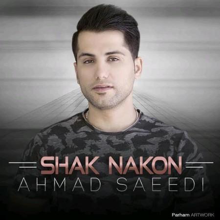 دانلود آهنگ شک نکن از احمد سعیدی