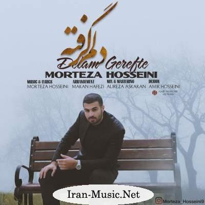 دانلود آهنگ جدید مرتضی حسینی بنام دلم گرفته